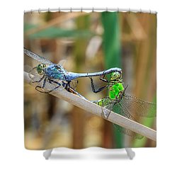 Dragonfly Love Shower Curtain by Everet Regal
