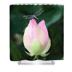 Shower Curtain featuring the photograph Dragonfly On Water Lily by Donna  Smith