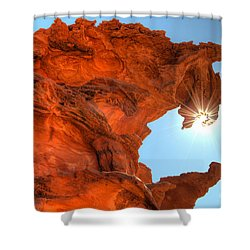 Dragons Breath Shower Curtain by Bob Christopher