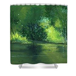 Dream 1 Shower Curtain by Anil Nene