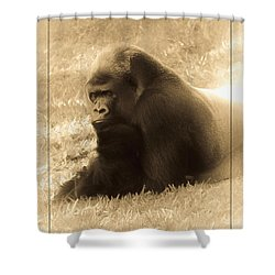 Dreaming Of Home Shower Curtain by DigiArt Diaries by Vicky B Fuller