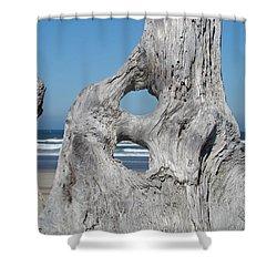 Driftwood Art Prints Coastal Blue Sky Ocean Waves Shoreline Shower Curtain by Baslee Troutman