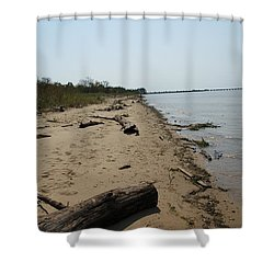 Driftwood Shower Curtain by Charles Kraus