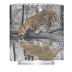 Drinking Jaguar Shower Curtain