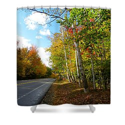 Driving Though The Birches Shower Curtain