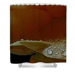 Shower Curtain featuring the photograph Drops Of Light by Debbie Portwood