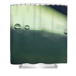 Shower Curtain featuring the photograph Drops by Priya Ghose