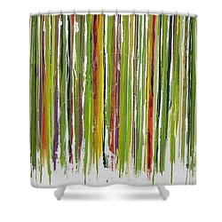 D.s. Color Band Shower Curtain