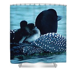 Duck Family Joy In The Lake  Shower Curtain by Colette V Hera  Guggenheim