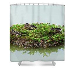 Duck Heaven Shower Curtain
