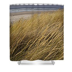 Dune Grass On The Oregon Coast Shower Curtain by Mick Anderson