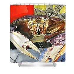 Dungeness Shower Curtain