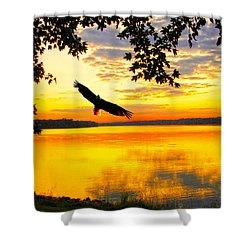 Shower Curtain featuring the photograph Eagle At Sunset by Randall Branham