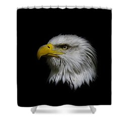 Shower Curtain featuring the photograph Eagle Head by Steve McKinzie