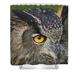 Shower Curtain featuring the photograph Eagle Owl 2 by Clare Bambers