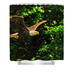 Shower Curtain featuring the photograph Eagle Taking Lunch To Her Babies by Randall Branham
