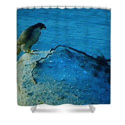 Eagle View Shower Curtain by Colette V Hera  Guggenheim