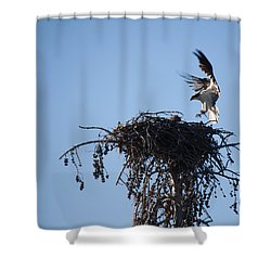 Eagle's Nest Shower Curtain by Ralf Kaiser
