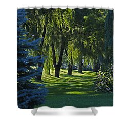 Shower Curtain featuring the photograph Early Morning by John Stuart Webbstock