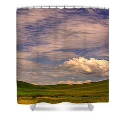 Early Summer Wheat In The Palouse Shower Curtain by David Patterson