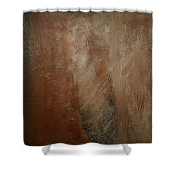 Shower Curtain featuring the painting Earthen by Dolores  Deal