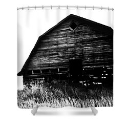 East Wind Shower Curtain by Empty Wall