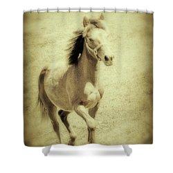 Easy Spirit Shower Curtain by Karol Livote