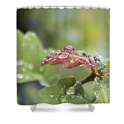 Eau De Vie - S01r03 Shower Curtain by Variance Collections