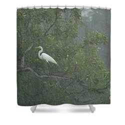 Egret In The Monsoons Shower Curtain by Bob Christopher