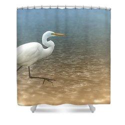 Egret Stroll Shower Curtain by Karol Livote