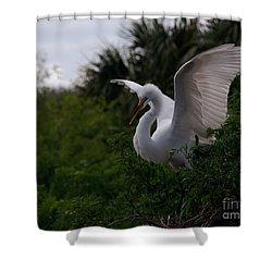 Shower Curtain featuring the photograph Egret Wings by Art Whitton