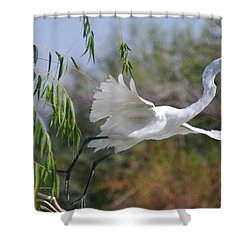 Shower Curtain featuring the photograph Egret's Flight by Tam Ryan