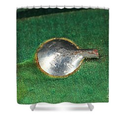 Electronics Board Solder Joint Shower Curtain by Ted Kinsman