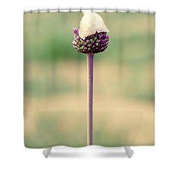 Elegance Shower Curtain by Stelios Kleanthous