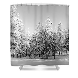 Shower Curtain featuring the photograph Elegant Wonderland by Janie Johnson