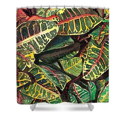 Elena's Crotons Shower Curtain by Marionette Taboniar