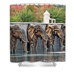 Elephants Of The Mandir Shower Curtain