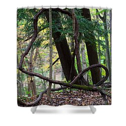 Embrace Shower Curtain by Barbara McMahon