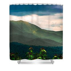 Emerald And Gold Shower Curtain by Scott Hervieux