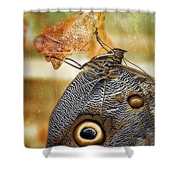 Emergent Culture Shower Curtain by Skip Hunt