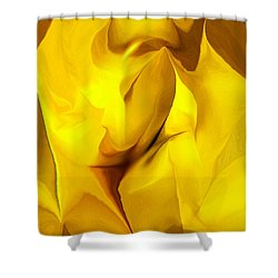 Emo-2 Shower Curtain by David Lane