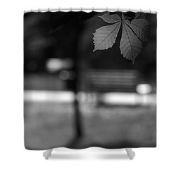 Empty Bench Shower Curtain