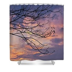 Enchanted Evening Shower Curtain by Rachel Cohen