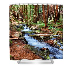 Enchanted Forest Shower Curtain