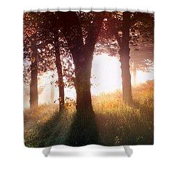 Enchanted Meadow Shower Curtain by Debra and Dave Vanderlaan