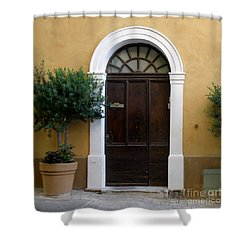 Enchanting Door Shower Curtain by Lainie Wrightson