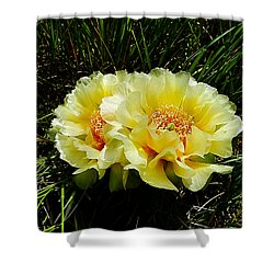 Plains Prickly Pear Cactus Shower Curtain