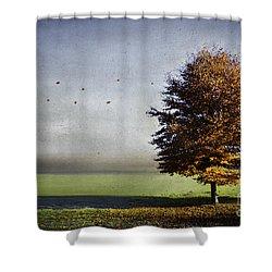 Enjoying The Autumn Sun Shower Curtain by Hannes Cmarits