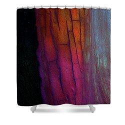Shower Curtain featuring the digital art Enter by Richard Laeton