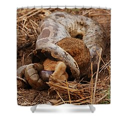 Shower Curtain featuring the photograph Entrapped by Fotosas Photography